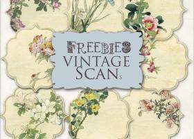 Imágenes estilo vintage y papeles estampados para descargar gratis