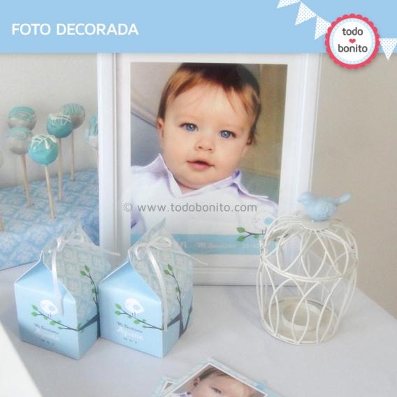 kit imprimible pajarito celeste foto decorada