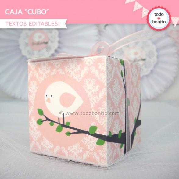 pajarito-bebe-caja-cubo1