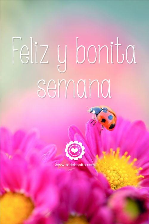 Feliz y bonita semana : Untitled 1 from blog.todobonito.com size 500 x 752 png 303kB