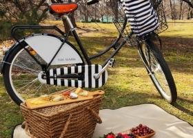 Salimos de picnic..?