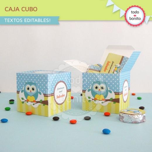 Cajita cubo de buhos para niños