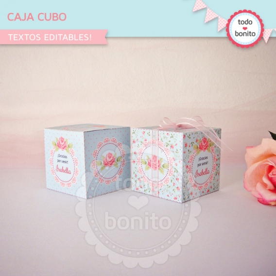 Caja Cubo Imprimible Shabby Chic Aqua Rosa