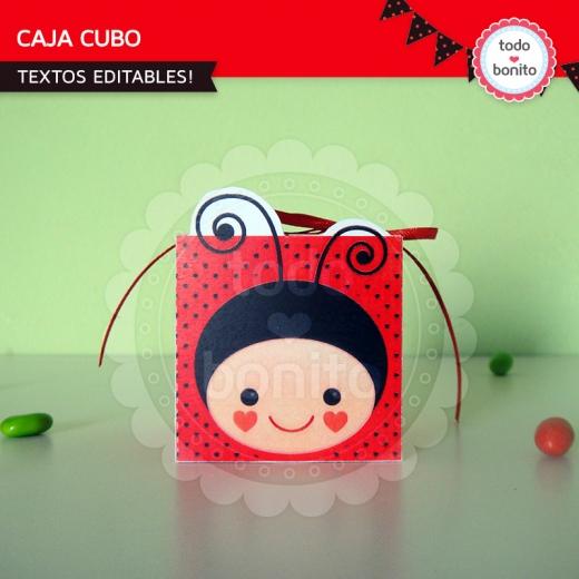 ladybug cajita cubo