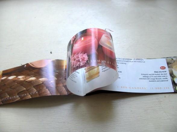 Tutorial flores con catálogos Paso 3