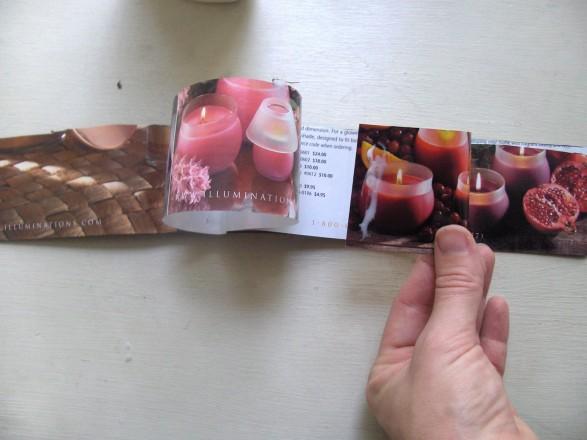 Tutorial flores con catálogos Paso 4