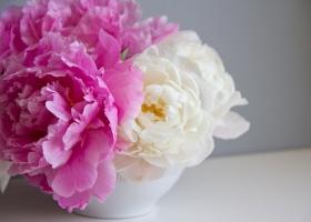 Adorable bouquet de flores