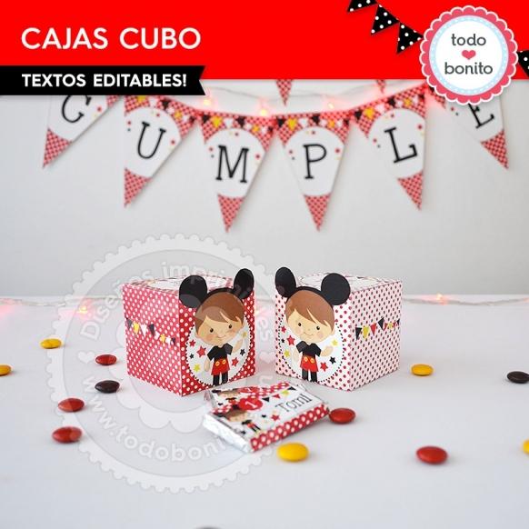 Cajas Cubo Orejas Mickey
