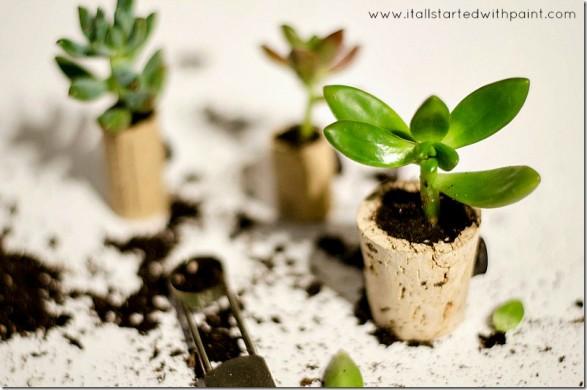Mini macetas con imán Paso 4