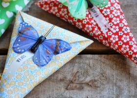 conos_mariposas