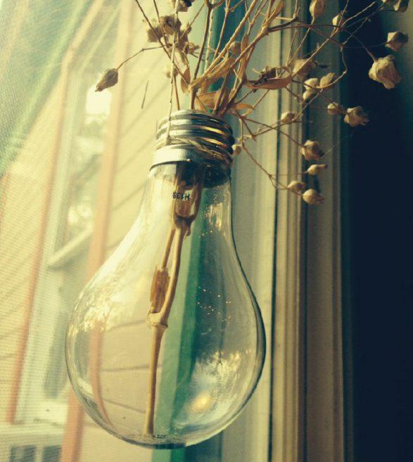 bombitas de luz