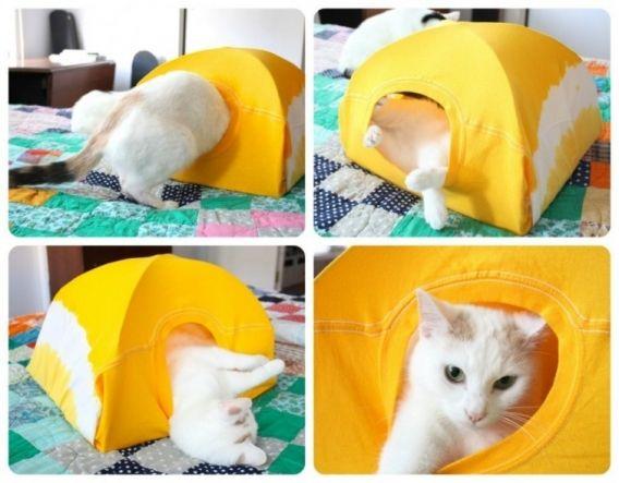 Como realizar un hogar para tu mascota felina.