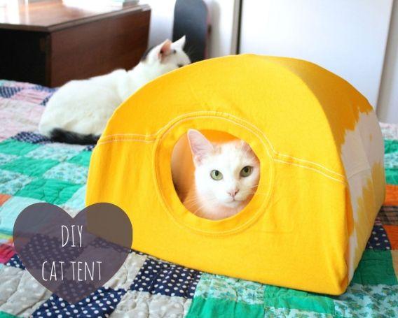 Como realizar un hogar para tu mascota felina