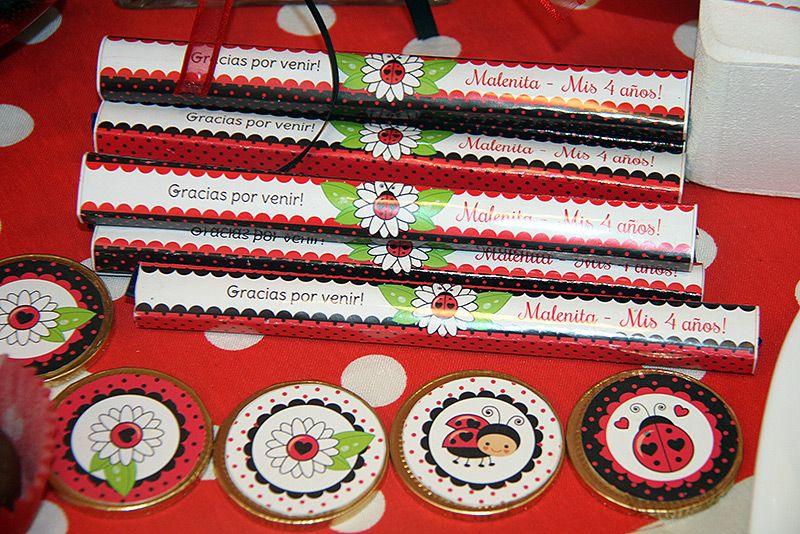 Yapa y moneditas decorados Ladybug