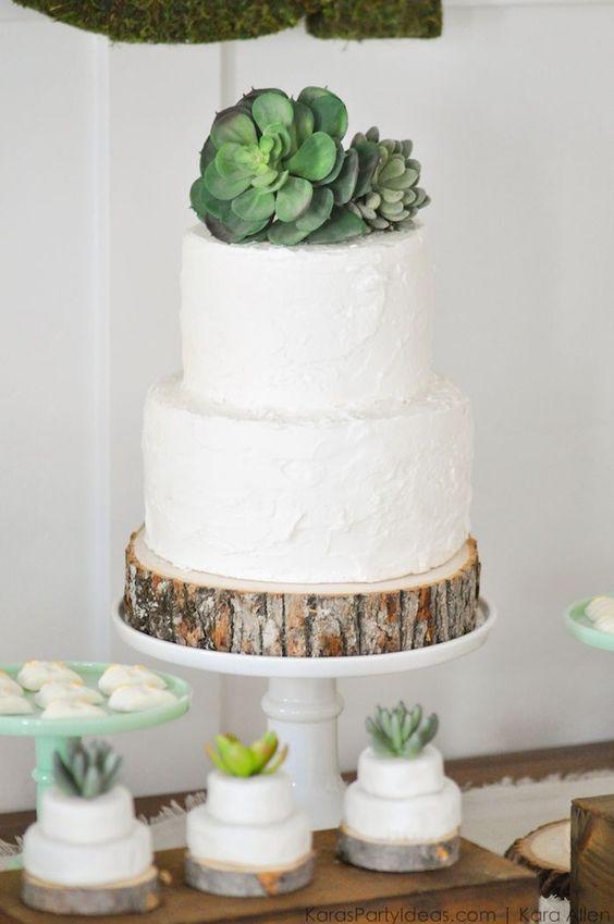 Tortas de cactus con plantas y flores naturales