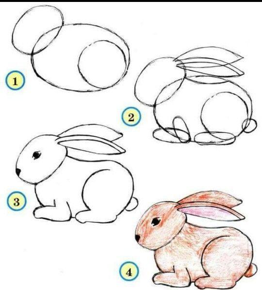 Como dibujar un conejito
