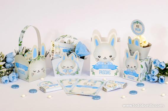Hermosos kits imprimibles de conejitos