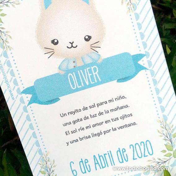 Kit imprimible de conejitos tarjeta de nacimiento