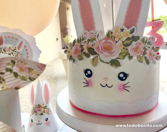 Cumpleaños de conejita Todo Bonito
